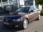 Audi A4 Avant 2.0 TDI Quattro 150 Marron à Beaupuy 31