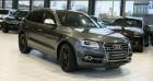 Audi SQ5 3.0 V6 BITDI 313 QUATTRO TIPTRONIC 8 * Pano * Gris à Mudaison 34
