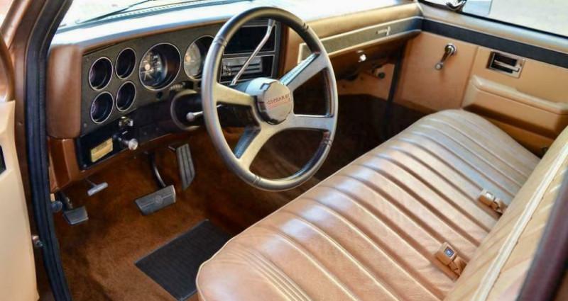 Chevrolet C10 C-10  occasion à LYON - photo n°2