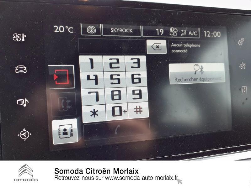 Citroen C4 Cactus 1.6 BlueHDi 100 S&S Feel Business ETG6 Gris occasion à MORLAIX - photo n°17