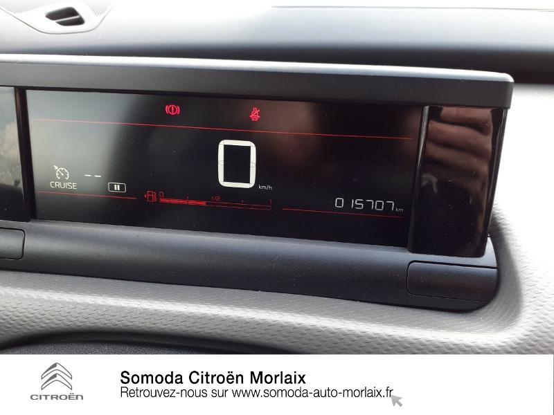 Citroen C4 Cactus PureTech 110ch S&S Feel Business E6.d Gris occasion à MORLAIX - photo n°12