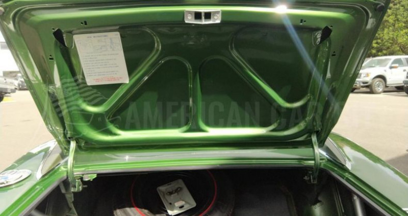 Dodge Charger R/T 440 SIX PACK - PISTOL GRIP - SUPER TRACK PACK Vert occasion à Le Coudray-montceaux - photo n°7