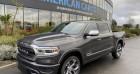 Dodge Ram Crew cab LIMITED 2019 Gris 2019 - annonce de voiture en vente sur Auto Sélection.com