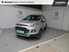 Ford EcoSport 1.0 EcoBoost 125ch Titanium Gris à Brie-Comte-Robert 77