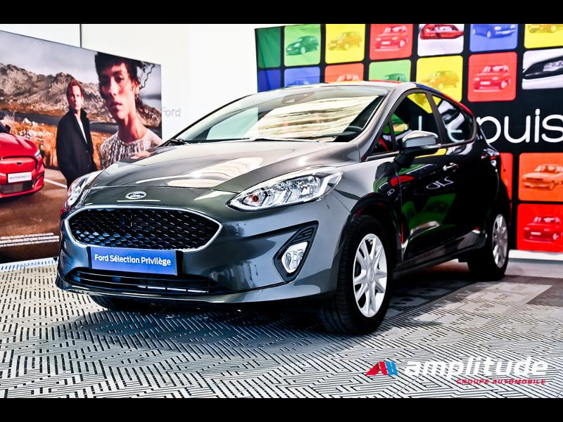 Ford Fiesta 1.1 70ch Trend 5p Gris occasion à Dijon - photo n°3