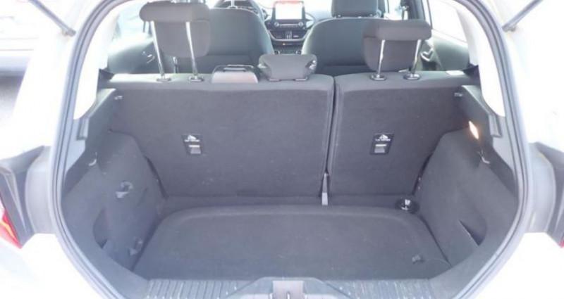 Ford Fiesta 1.5 TDCI 85 TREND BUSINESS NAV 5p Gris occasion à CHANAS - photo n°4