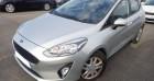 Ford Fiesta 1.5 TDCI 85 TREND BUSINESS NAV 5p Gris à CHANAS 38