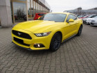 Ford Mustang 2.3 eco Boost  à Beaupuy 31