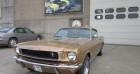 Ford Mustang Fastback 65 Bronze à Gullegem 85