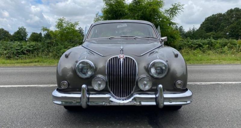 Jaguar MK II 3.8L 1964 Gris occasion à Saint-saturnin - photo n°2