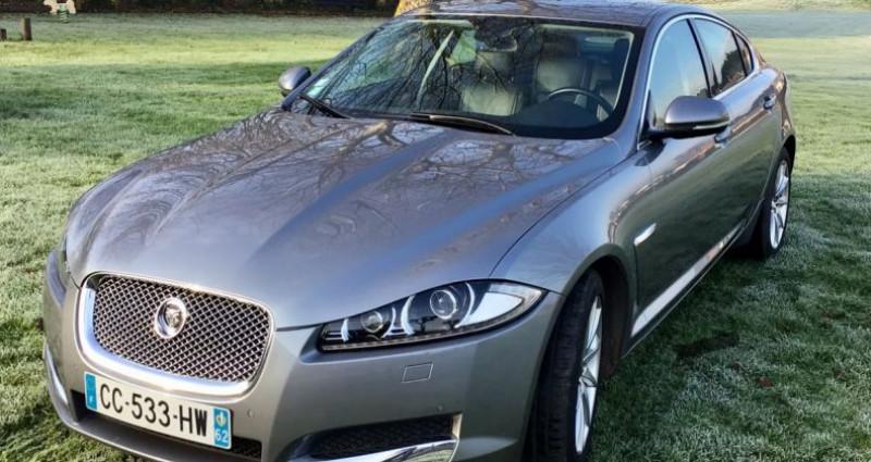 Jaguar XF luxury Gris occasion à Mudaison - photo n°3
