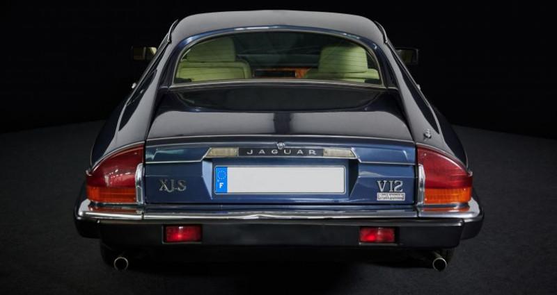 Jaguar XJS V12 5.3L / V12  occasion à Pouzauges - photo n°5
