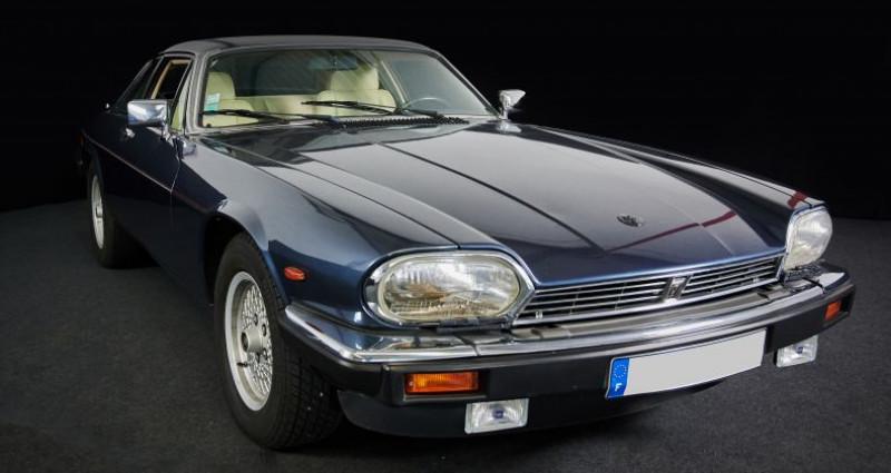 Jaguar XJS V12 5.3L / V12  occasion à Pouzauges