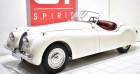 Jaguar XK 120 Roadster Blanc à La Boisse 01