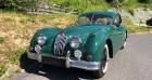 Jaguar XK Coupe Type C 1955  à Puiseux Le Hauberger 60
