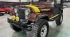 Jeep CJ CJ 4.2l 44 réhausse jante 17p 1985 prix tout compris Marron à PONTAULT COMBAULT 77