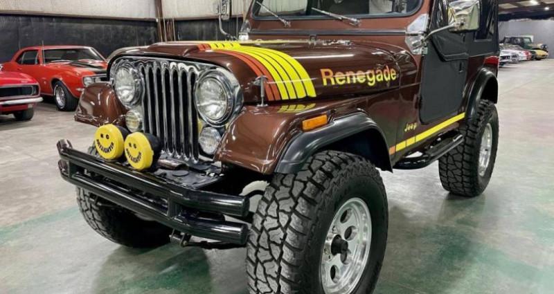 Jeep CJ CJ 4.2l 44 réhausse jante 17p 1985 prix tout compris Marron occasion à PONTAULT COMBAULT