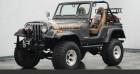 Jeep CJ CJ 4x4 renegade 1978 prix tout compris Gris à PONTAULT COMBAULT 77