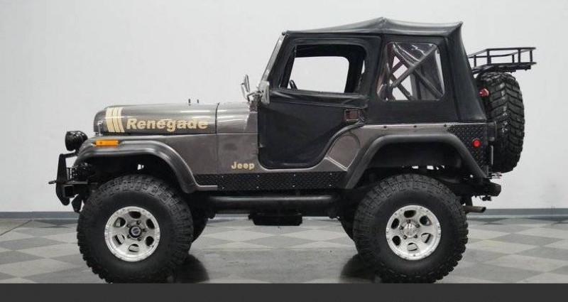 Jeep CJ CJ 4x4 renegade 1978 prix tout compris Gris occasion à PONTAULT COMBAULT - photo n°2