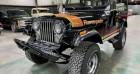 Jeep CJ CJ Renegade 304ci v8 1980 prix tout compris Noir à PONTAULT COMBAULT 77