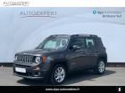 Jeep Renegade 1.6 MultiJet 120ch Longitude Business Gris à Villenave-d'Ornon 33