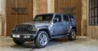 Jeep Wrangler Sahara - Unlimited - autom - leder - navi - Apple Gris à HALEN 35