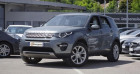 Land rover Discovery 2.0 TD4 150 HSE 4WD AUTO Gris à Chambourcy 78