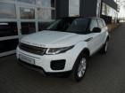 Land rover Range Rover Evoque ED4 150 Blanc à Beaupuy 31