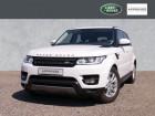Land rover Range Rover 3.0 TDV6 SE 258 Blanc à Beaupuy 31