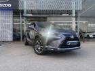 Lexus NX 300h 4WD Luxe Euro6d-T Gris à Saint-Herblain 44