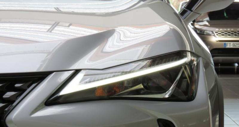 Lexus UX 2.0 250H 4WD Premium Gris occasion à Tours - photo n°6