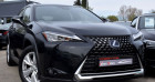 Lexus UX 250H 2WD PACK BUSINESS MY20 Noir à VENDARGUES 34