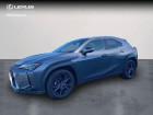 Lexus UX 250h 4WD Luxe MY19 Gris à VANNES 56
