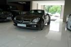Mercedes Classe SLK 250 250 CDI BLUEEFFICIENCY 7G-TRONIC Gris à Beaupuy 31