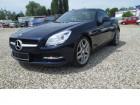 Mercedes Classe SLK 250 250 CDI Bleu à Beaupuy 31
