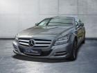 Mercedes CLS 250 CDI Shooting Brake Argent à Beaupuy 31