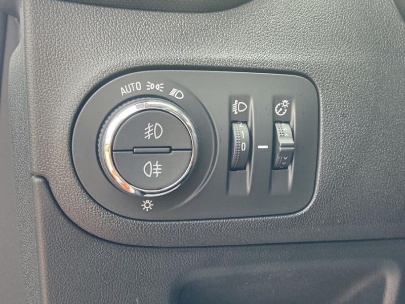 Opel Crossland X 1.5 D 102 BV6 DESIGN 120 ANS GPS Caméra Gris occasion à Montauban - photo n°20