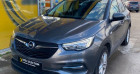 Opel Grandland X 1.2 Turbo 130ch Edition Business BVA8 109g Gris à vert-saint-denis 77