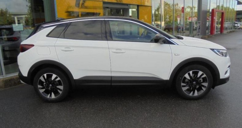 Opel Grandland X 1.5 D 130ch Design Line Blanc occasion à vert-saint-denis - photo n°4