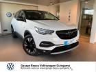 Opel Grandland X 1.5 D 130ch Design Line Blanc à Saint Agathon 22