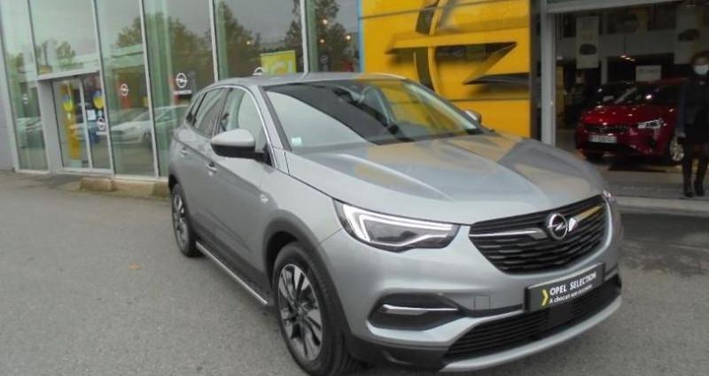 Opel Grandland X 1.5 D 130ch Elite Gris occasion à vert-saint-denis