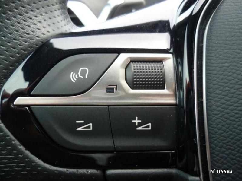 Peugeot 307 1.6 16v Griffe 5p Gris occasion à Mareuil-lès-Meaux - photo n°9