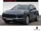 Porsche Cayenne 3.0 V6 S 440 Bleu à BEAUPUY 31