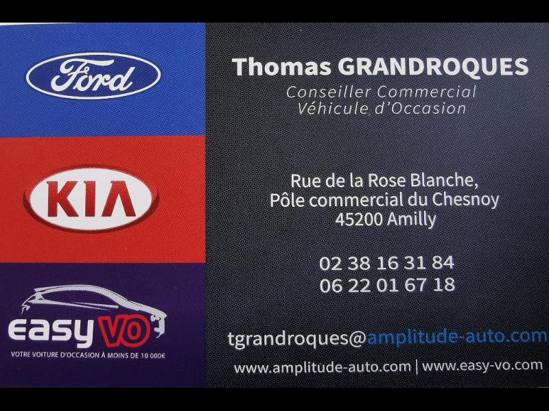 Renault Grand Scenic 1.5 dCi 110ch Energy Business 7 places Bleu occasion à Amilly - photo n°4