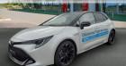 Toyota Corolla 122h GR Sport MY21 Blanc à Saint-saulve 59