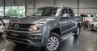 Volkswagen Amarok Pick up - lichte vracht 3.0 diesel V6 AUTOMAAT Gris à Maldegem 99